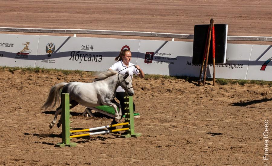 маленькие лошадки (2 of 32)