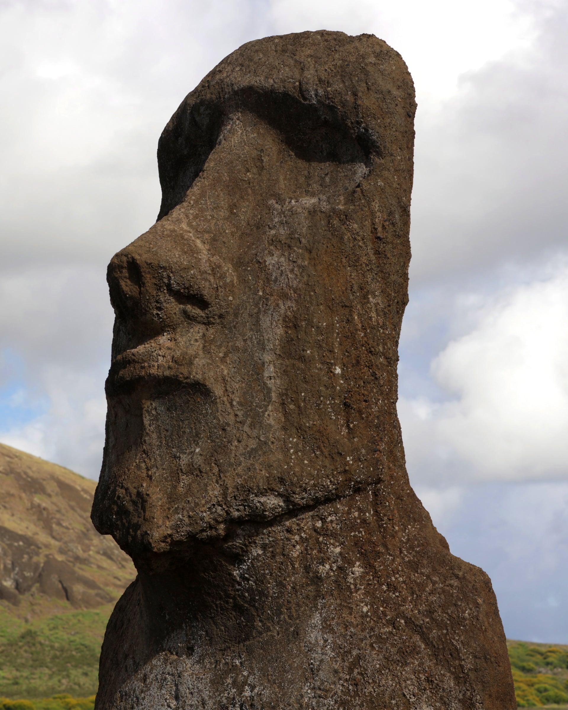 каменное лицо фото все сложится благоприятно