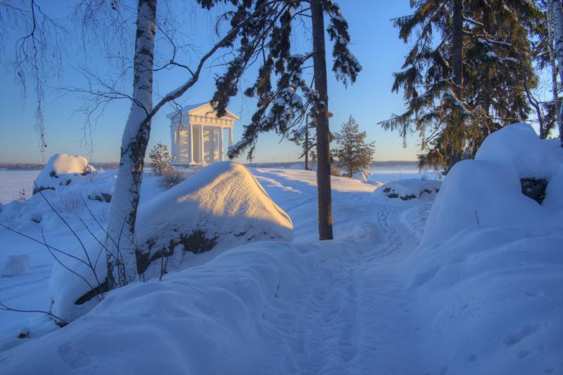 Монрепо зимой. Фото с сайта парка.