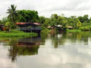 суринам-300x225