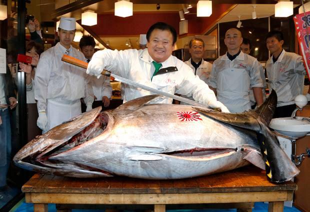 Самый дорогой тунец 2014 года