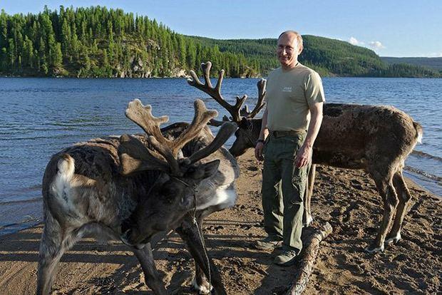 Путин и олени