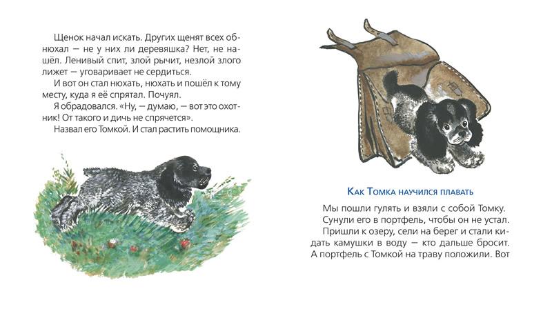 индивидуальность рассказ о животных томка картинки фото