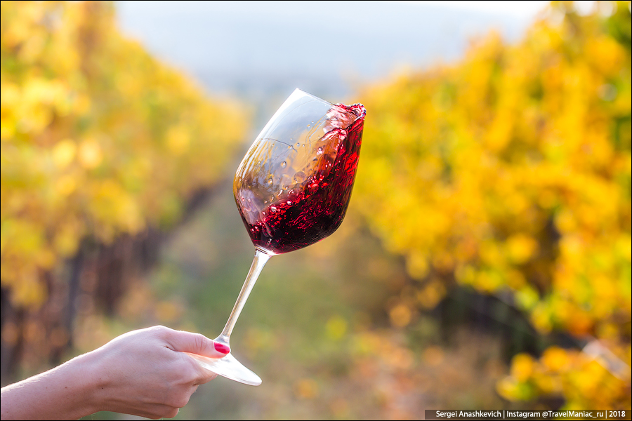 Какое вино нужно пить в Крыму