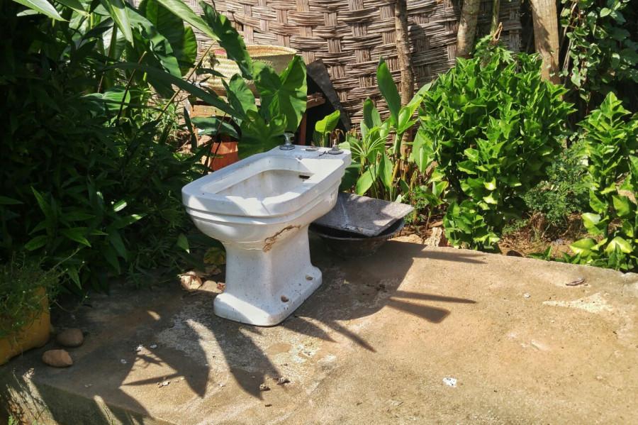 Такого туалета вы еще не видели!