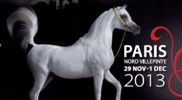 championat du monde1 2013