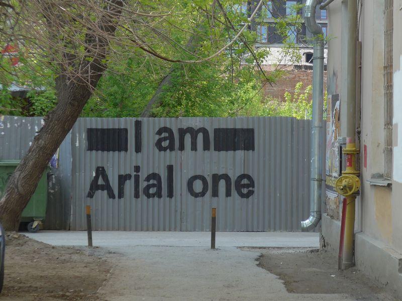 Я Ариал один