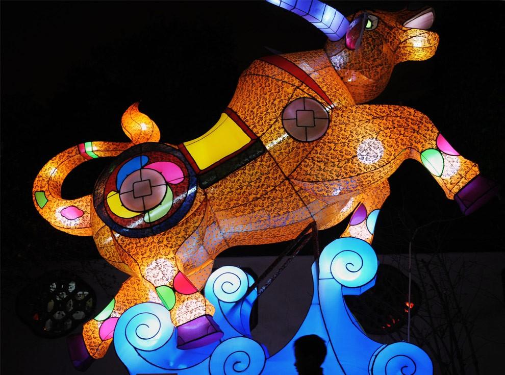 Мальчик проходит перед большим фонарем в форме быка на Фестивале Фонарей Qingchuange