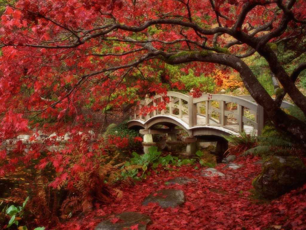 Japanese Garden, Royal Roads University, British Columbia