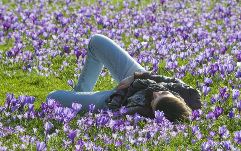 Признаки Весны