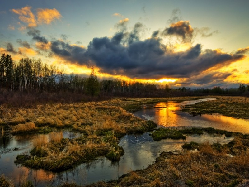 закат на английских болотах