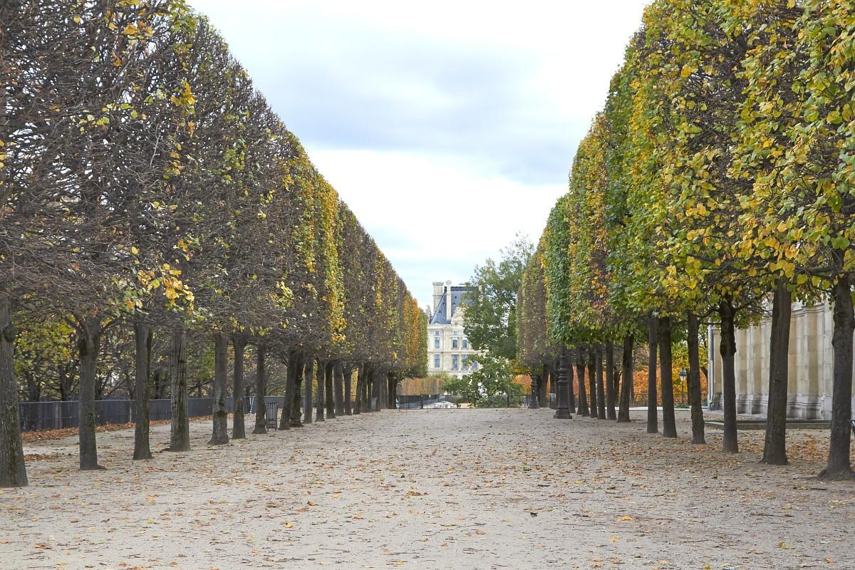 Париж 2018 - Сад Тюильри