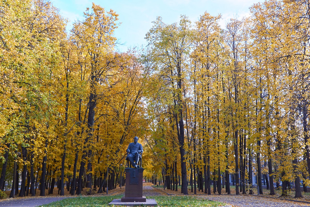 Памятник Кони, российский юрист