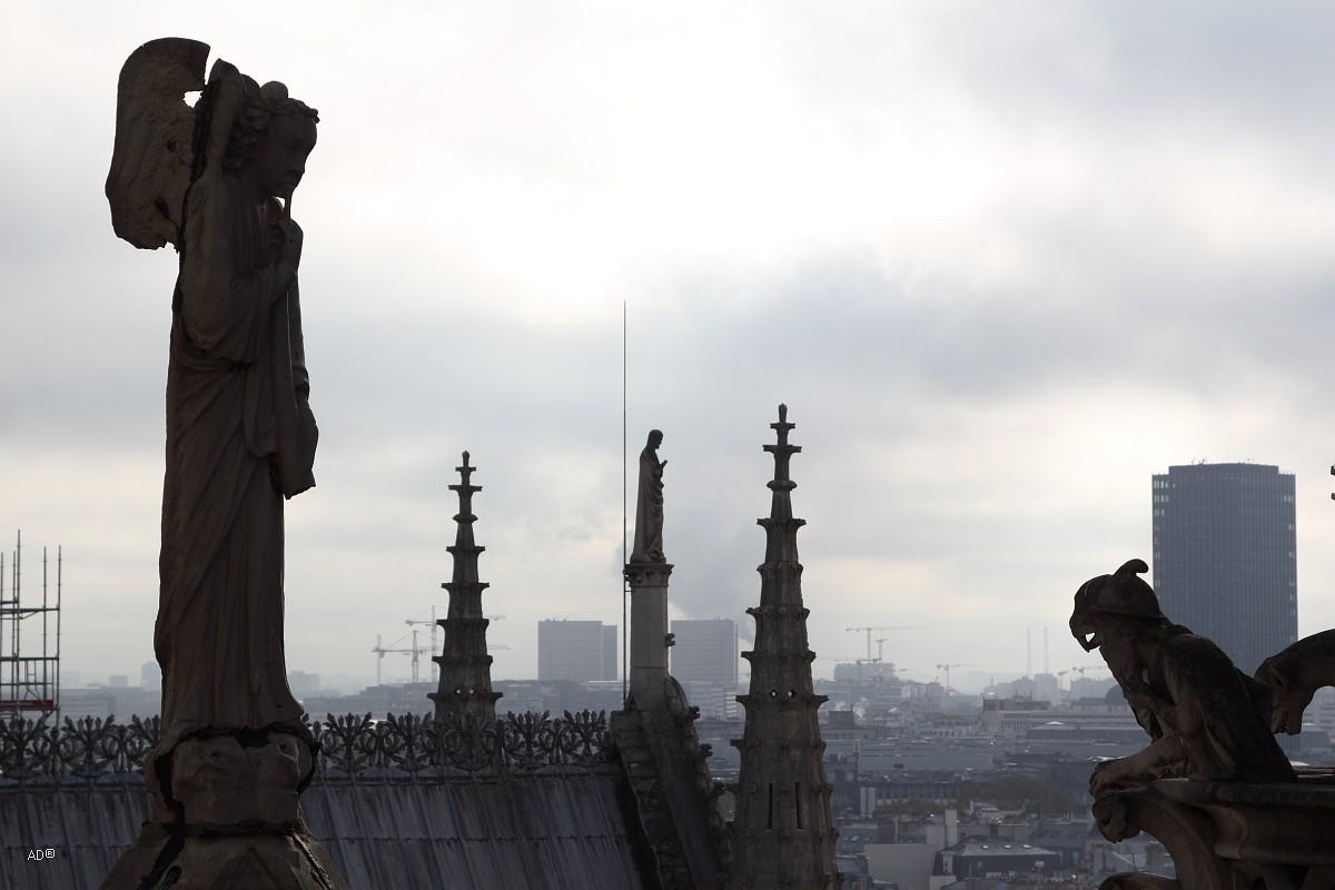 Париж 2018 - Нотр-Дам, Химеры