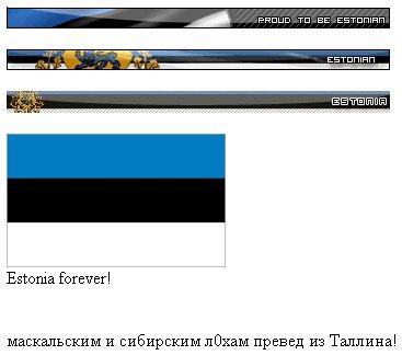 и в эстонии есть хакеры
