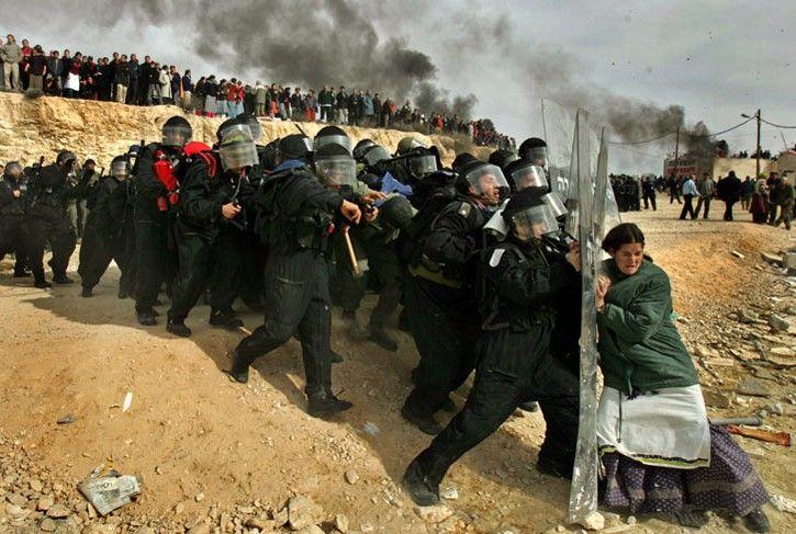 Эвакуация из Амона, Израиль