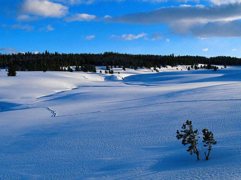 зимненький пейзажчик