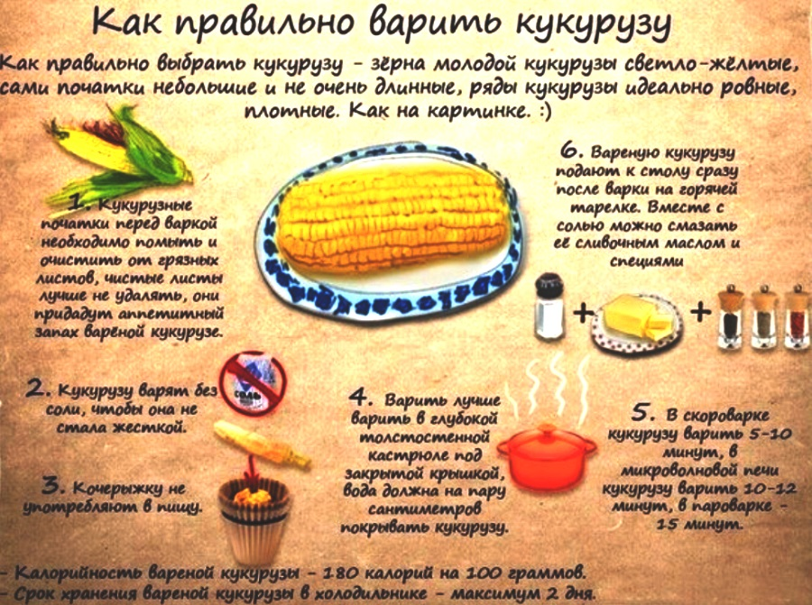 Как правильно варить кукурузу в початках домашних условиях