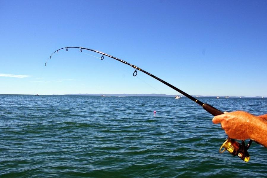 ловля риби в київ
