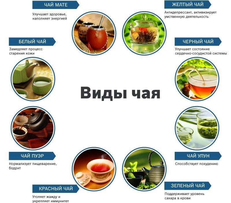 чай виды (2)