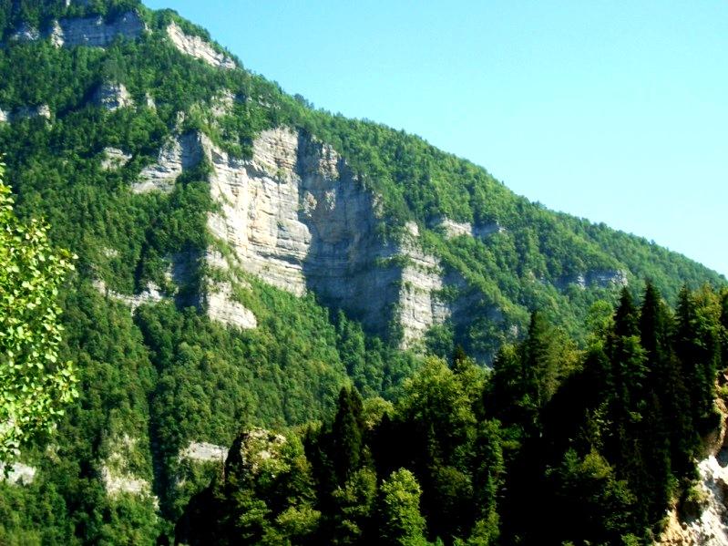 дорога на озеро Рица  (10)