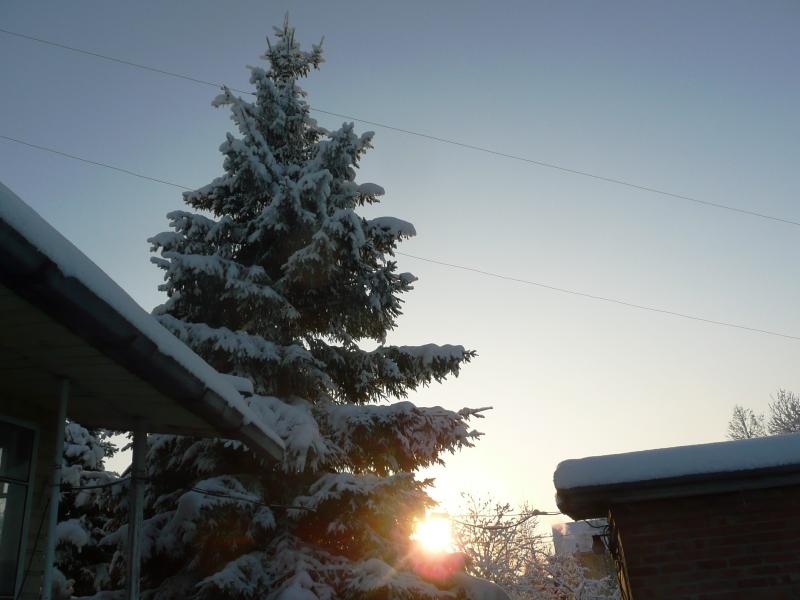 снег солн (4)