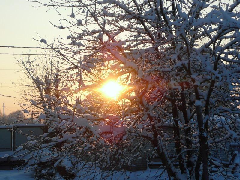 снег солн (6)
