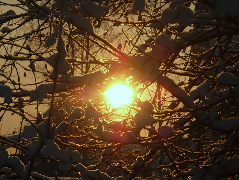 снег солн (7)
