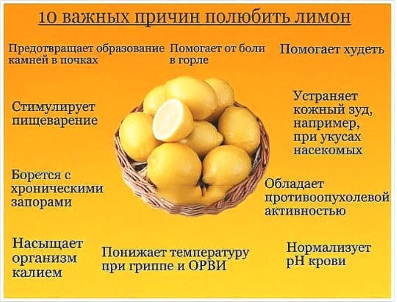 лимон 18