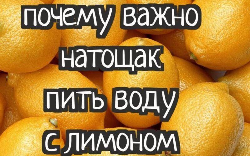 лимон 19