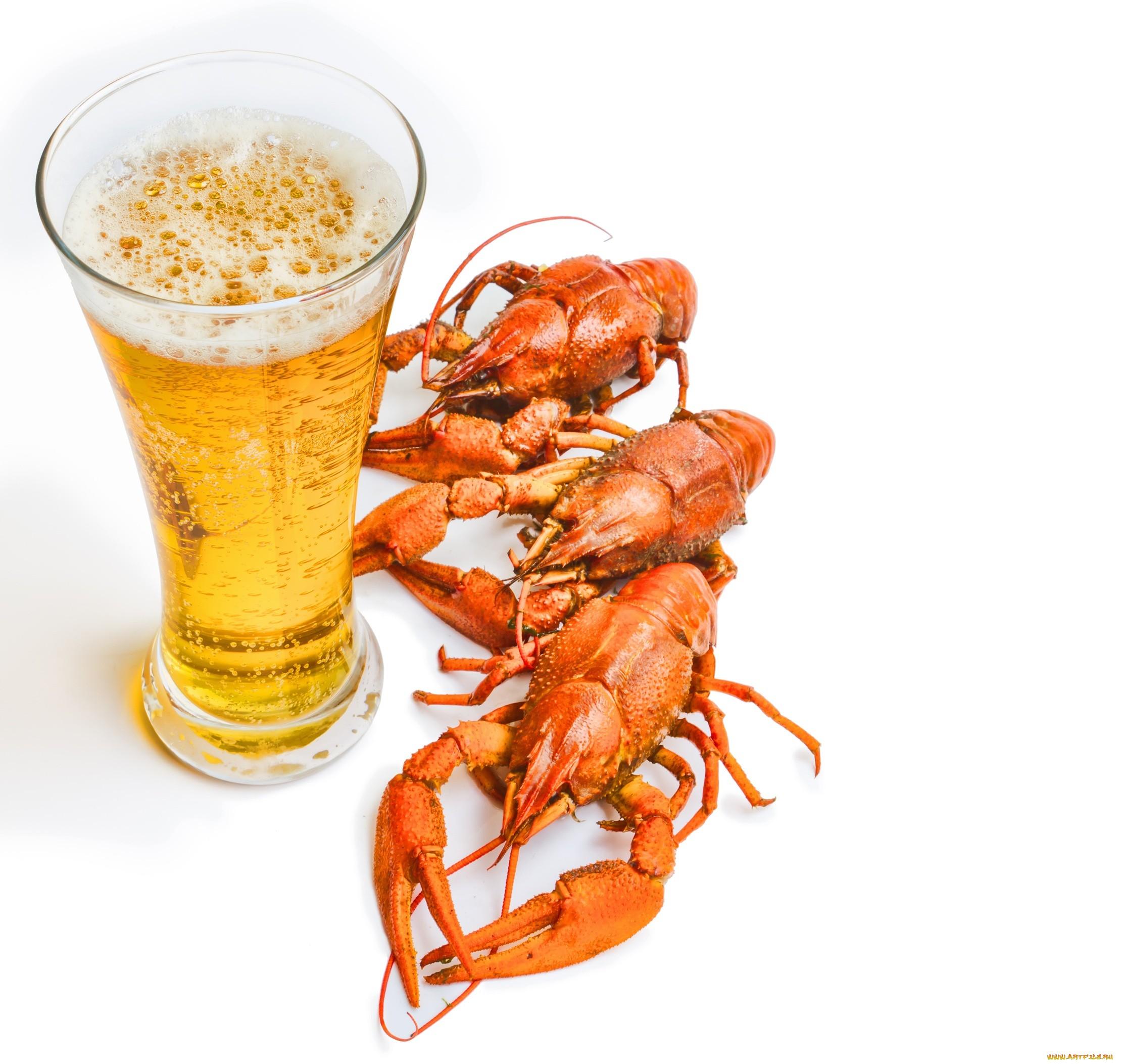 11-пиво-раки