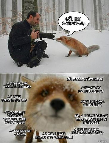 вопросы к фотографу