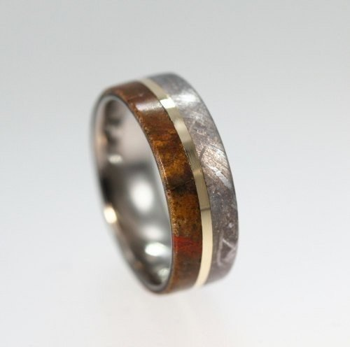 кольцо из кости динозавра, метеорита и белого золота.