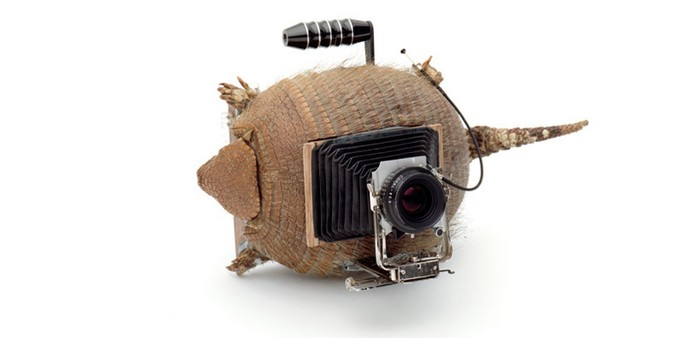 Серия ретро-камер Camera Collection — проект Тайо Онорато и Нико Кребса