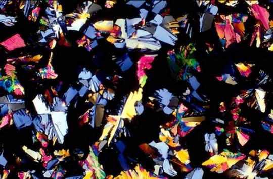 microscope-photographs-27-540x355