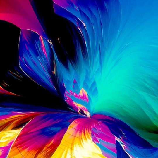 microscope-photographs-30-540x540