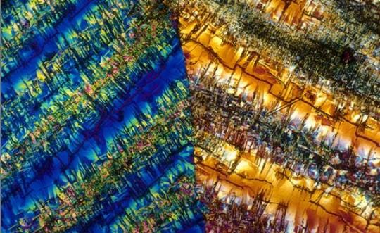 microscope-photographs-34-540x331