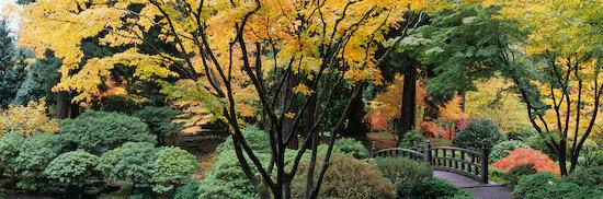 японский сад в портленде