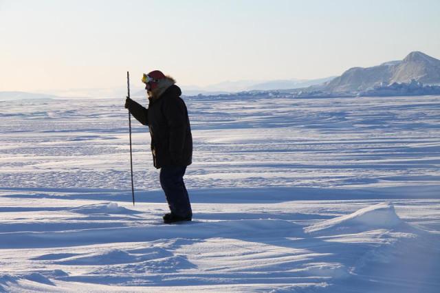 Элайджа ищет во льду тюленьи лунки