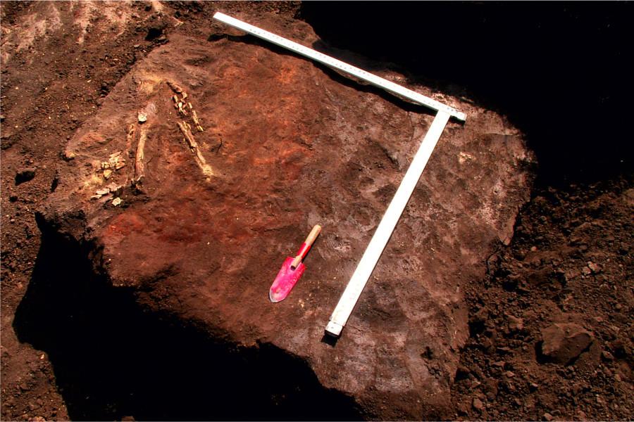 к3 п1 остатки скелета