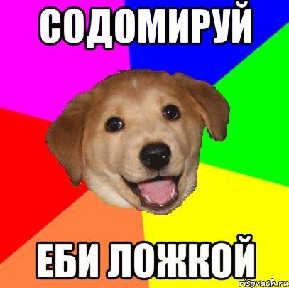 advice-dog_40678687_orig_