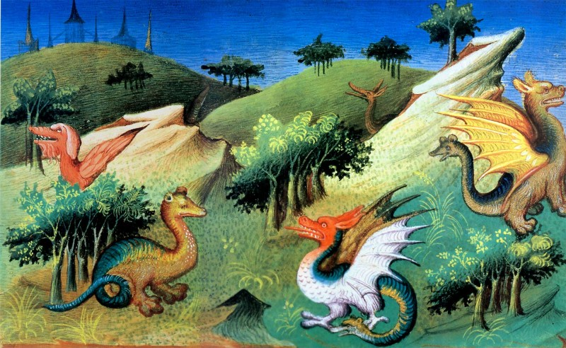 Рис.11. Разнообразие животного мира из царства Великого Хана.