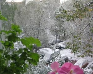 Первый снег-2.jpg