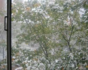 Первый снег-3.jpg