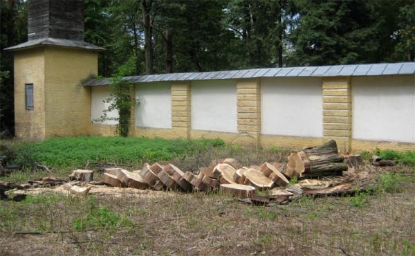 Интересно дерево распилили .....