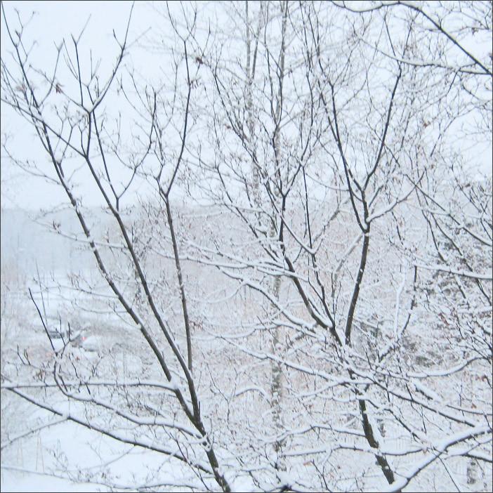 Первый снег-10.12