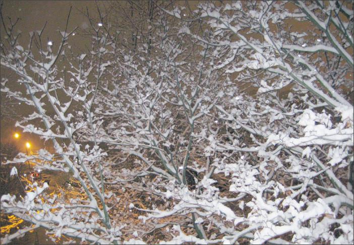Первый снег- вечером