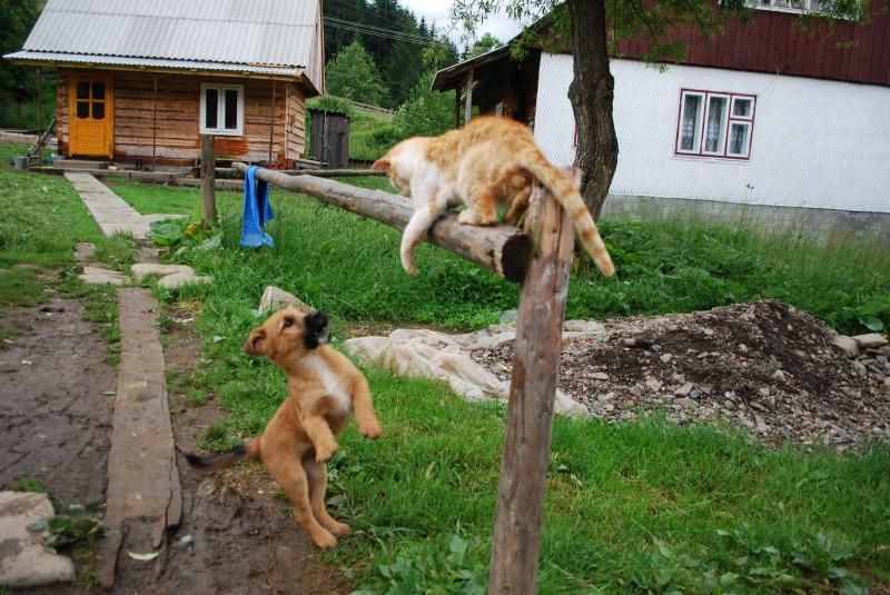 Закарпатье: совсем другая Украина