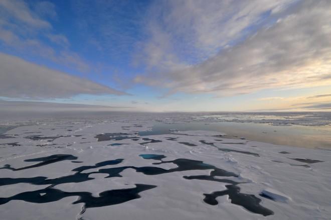 Арктика_7