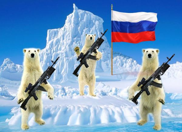 arctic-misjki.jpg